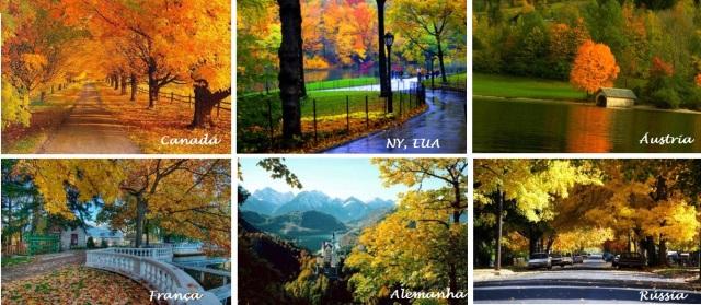 Outono: alaranjado no Hemisfério Norte