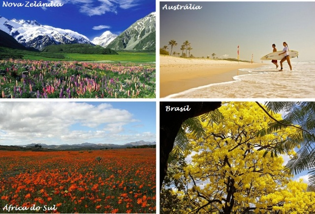 Primavera: encantadora no Hemisfério Sul